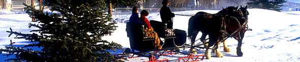 Romantic Winter Sleigh Rides, Scenic, Heber Valley Utah, Holidays, Christmas Dining