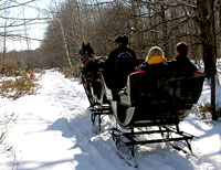 Winter Sleigh Ride to visit a Cowboy Poet, Heber Utah Provo Canyon, Park City