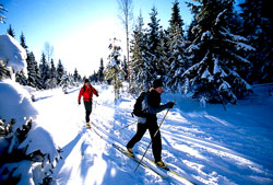 Cross Country Skiing, Rob Harper, Utah Outdoor Adventure Group, Wasatch Mountains, Park City, Utah, Salt Lake City, County, Snow Skiing, Free Classes