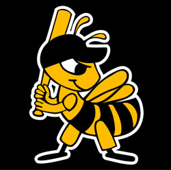 Salt Lake Bees Baseball, Salt Lake City, Utah